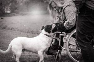 Wheelchair user with dog